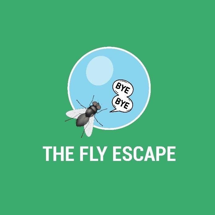 Fly Escape Logo